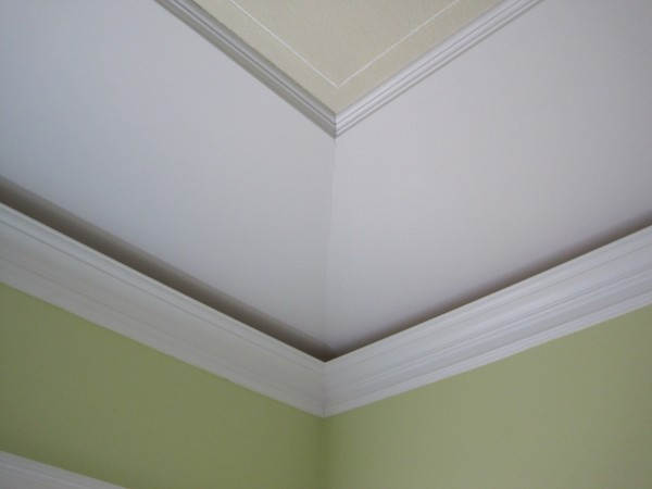 Master bedroom tray ceiling