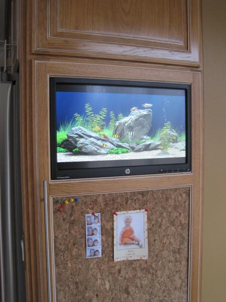 virtual aquarium